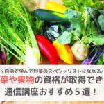 野菜資格通信講座おすすめ
